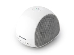 Bluetooth Portable Mini Speaker w/ Mic