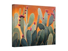 Cactus Orange by Rick Kersten (3 Sizes)