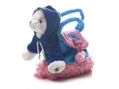 Pink Cat & Carrier with Hoody