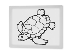 Tommy the Turtle Coloring Canvas