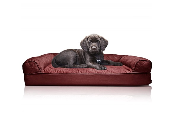 Terrific Furhaven Sofa Style Couch Pet Bed Machost Co Dining Chair Design Ideas Machostcouk