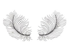 Feather Wing Wall Mirror (Set of 2)