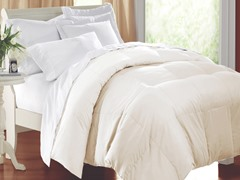 Egyptian Cotton Comforter-Ivory-3 Sizes