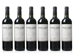 Viñas de Luján de Cuyo Malbec (6)