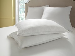 Faux Silk Pillows with Satin Cording-Standard - Set of 2