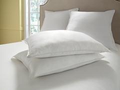 Dream Cloud™ Faux Silk Pillows-Standard-S/2