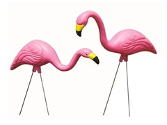 2-Pack of Pink Flamingos