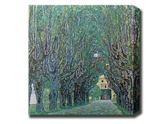 Avenue in Schloss Kammer Park (2 Styles)