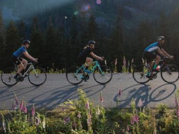 Diamondback and Raleigh Bikes