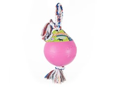 Durable Romp Roll Dog Pet Ball Toy: Pink- Multiple Sizes
