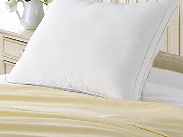 Exquisite Hotel Collection Pillows