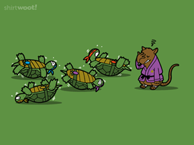 Turtle Training