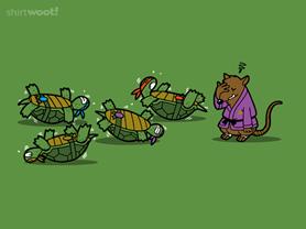 Turtle Training