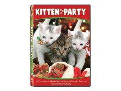Kitten Party DVD