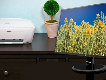 HP Monitors and Printers